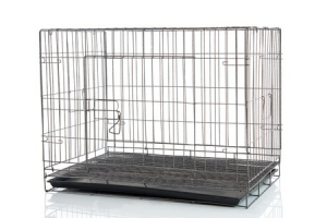 This is a photo of a dog crate