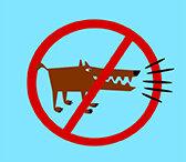 Bulldogs don't bark